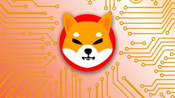 :-shiba-inu-is-the-third-most-googled-crypto-in-2021,-new-study-shows