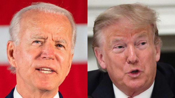 deep-dive:-these-6-health-care-stocks-are-'buys'-because-they-can-thrive-under-either-trump-or-biden