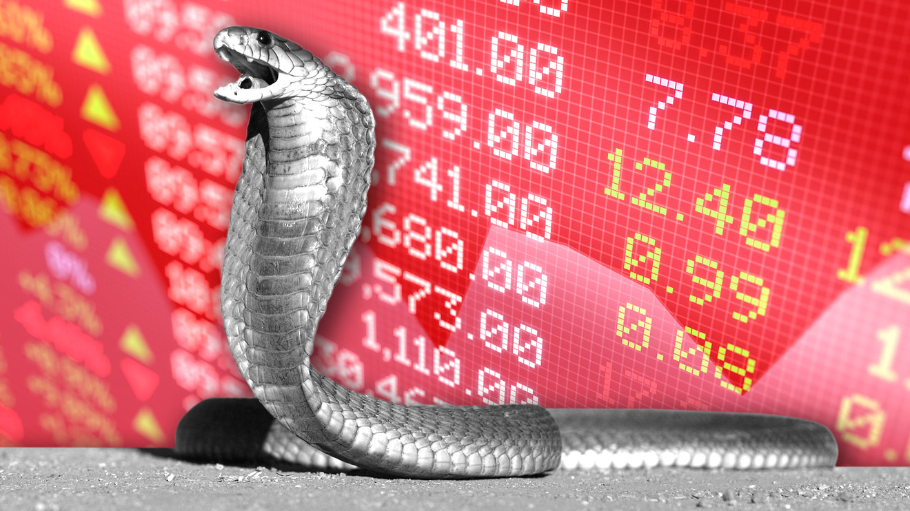 the-tell:-the-'cobra-effect'-will-have-a-'disastrous-and-unimaginable'-impact-on-the-market,-wall-street-vet-warns