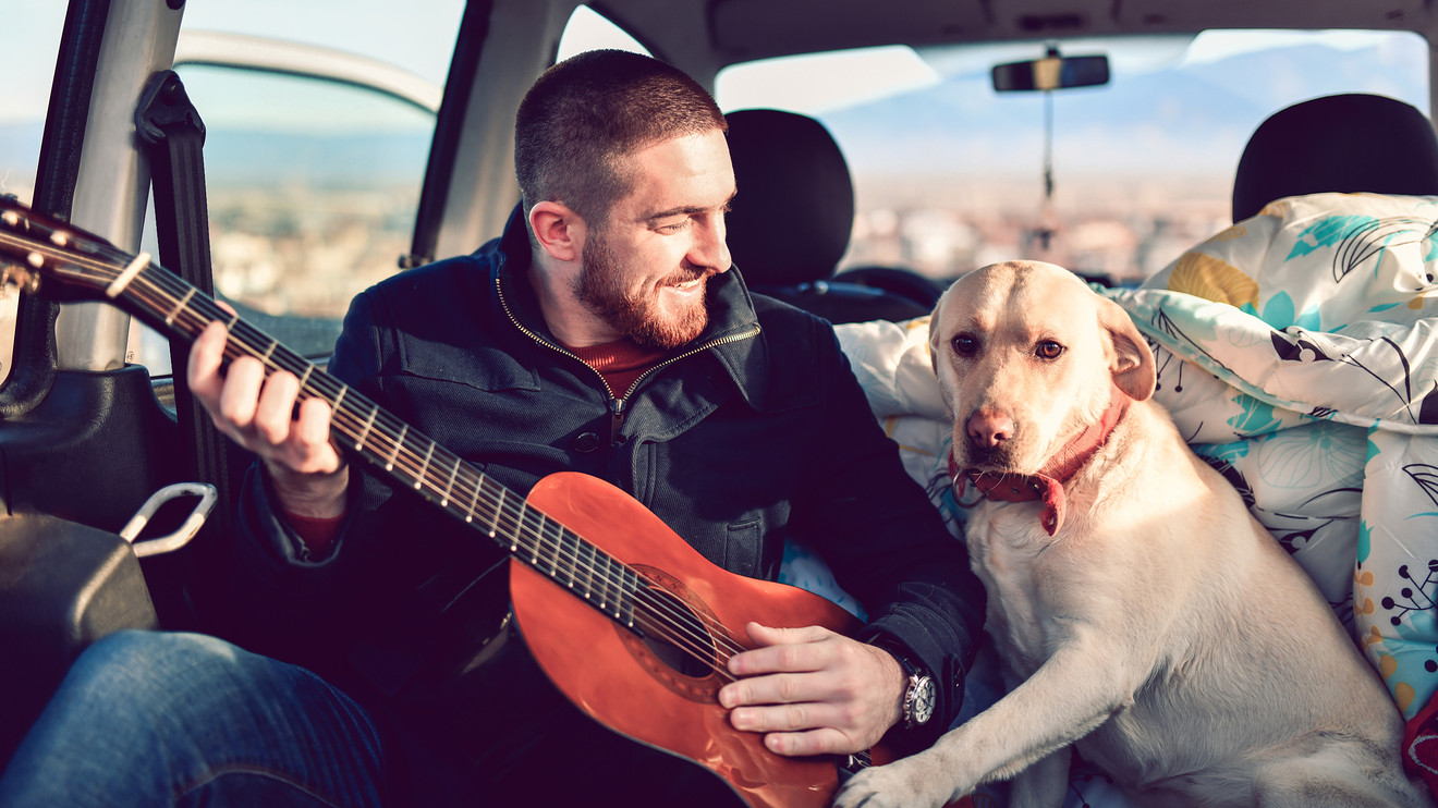 autotrader:-an-expert's-guide-to-road-tripping-with-your-dog