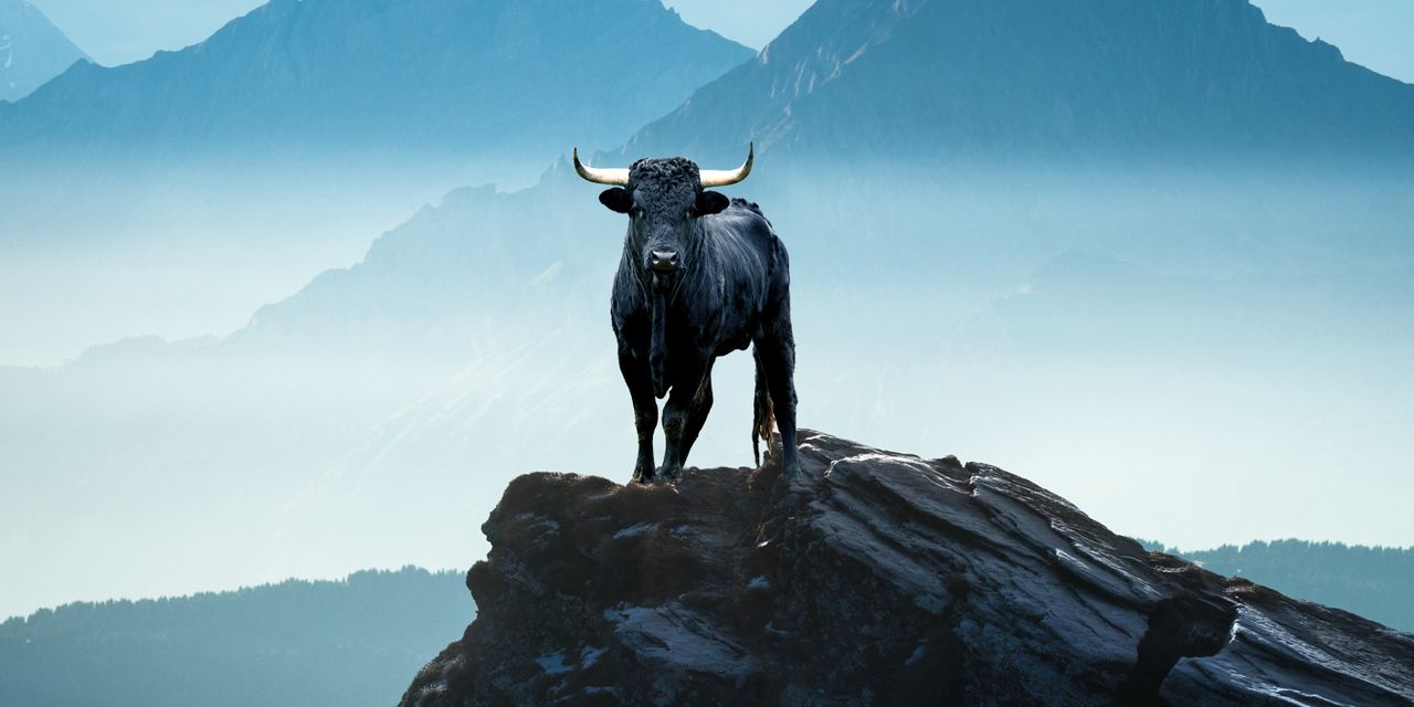 mark-hulbert:-what-signals-the-top-of-a-bull-market-in-stocks?-not-rising-interest-rates